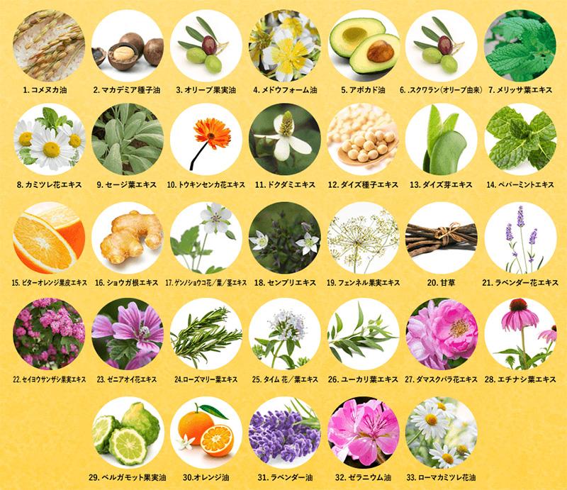 33種類の美容ハーブ